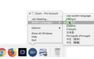 Как русифицировать Zoom Player Home Max