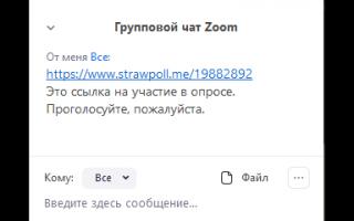 Как сделать опрос в Zoom