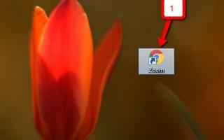 Использование Zoom в браузере